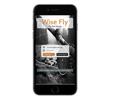 Wise Fly