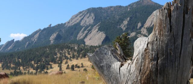 Your intel on biking, hiking and trail running around Boulder